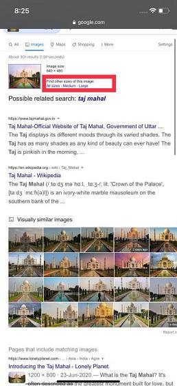 Görüntü bilgilerini bulma - iPhone'da Tersine Görsel Arama