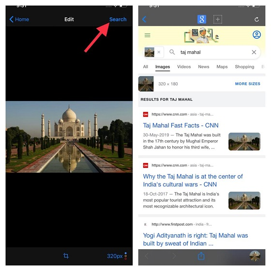 Find the essential information of an image - Reverse Image Search on iPhone