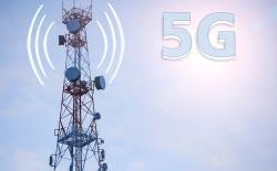Impact of 5G Radiation on Humans and Animals