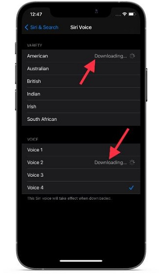 download new Siri Voice on iOS and iPadOS