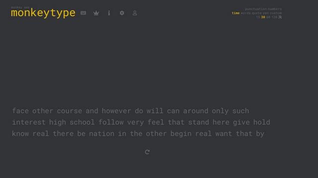 monkeytype interface