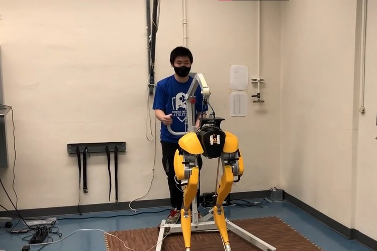 researchers taught this robot to learn to walk feat.