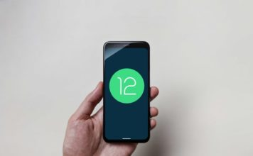 When Will My Phone Get Android 12 Update?