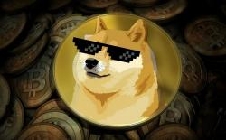 This Man Became a Dogecoin Millionaire in 2 Months