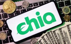 What is Chia Coin Cryptocurrency and how to farm it?