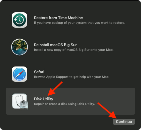 Click on Continue - downgrade from macOS monterey to macOS big sur