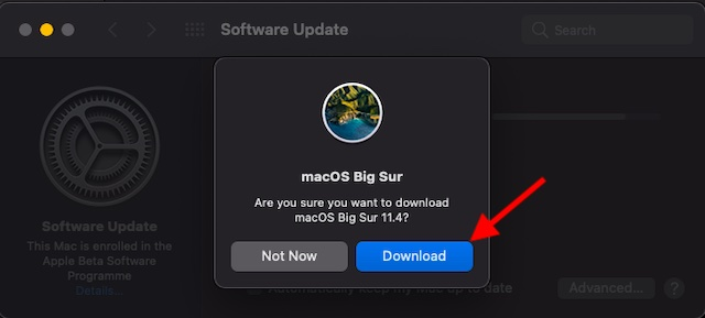 Click on Download