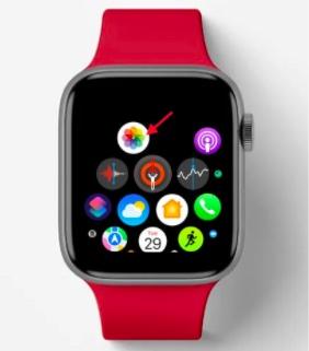 Open Photos app on Apple Watch