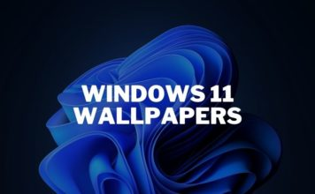 download windows 11 wallpapers right now