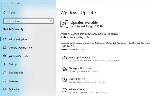 windows 11 insider preview build