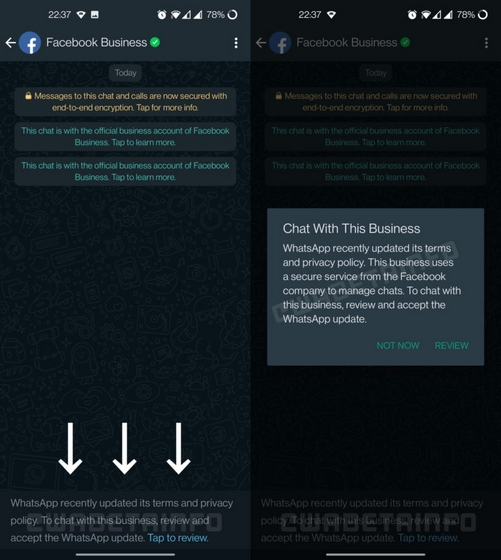 Accept WhatsApp Privacy Policy to chat with business account
