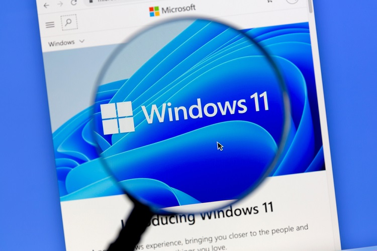 Home windows 11 Insider Preview