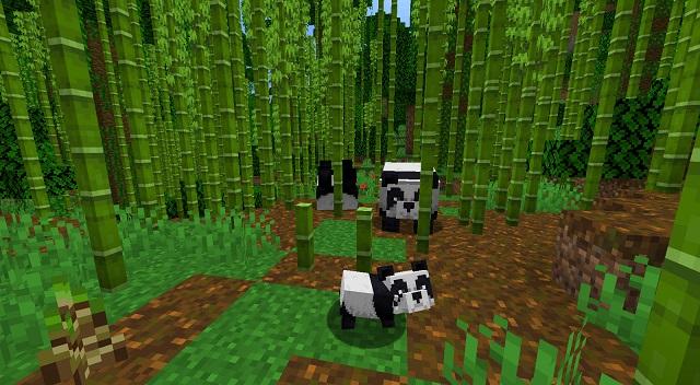 Bamboo Jungle Minecraft Biome
