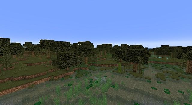 Minecraft Swamp Biome
