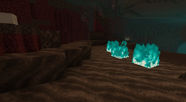 Soul Sand Valley Biome